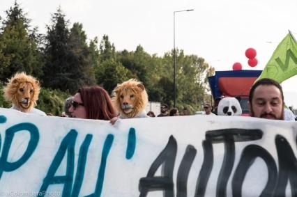 alessandro_colombara_archivio_alberto_peruffo_ccc_14_ottobre_015